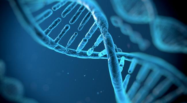 couv_biotech_NBIC